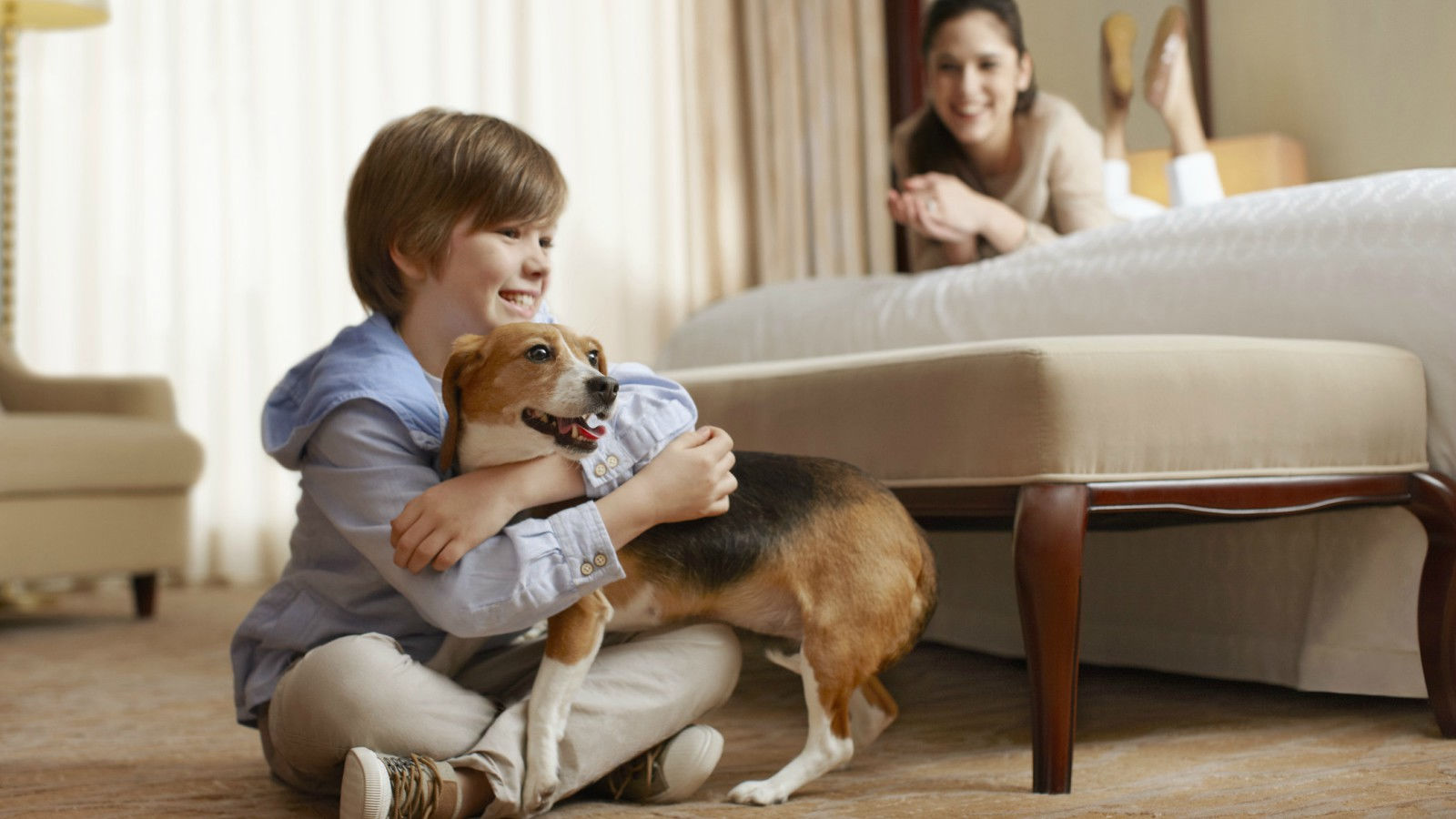 Sheraton Baltimore North - Pet Friendly Hotel
